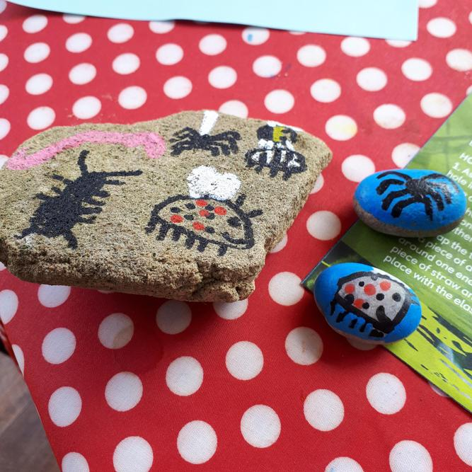 Zoe's rock bugs!