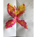 Martha's Symetrical Butterfly