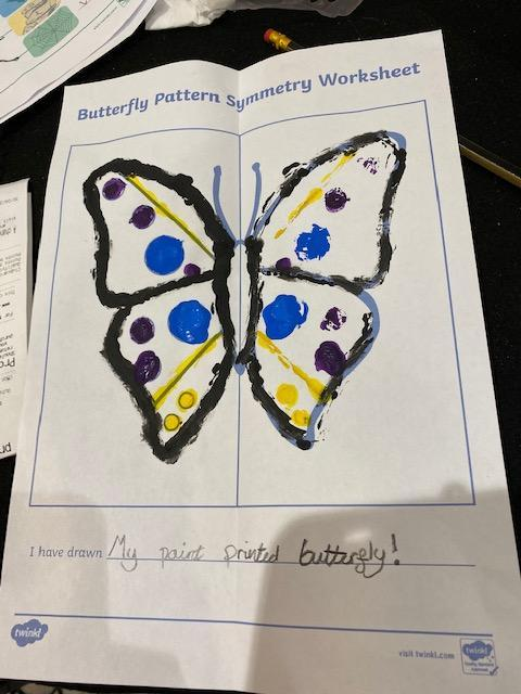 Erin's butterfly symmetry
