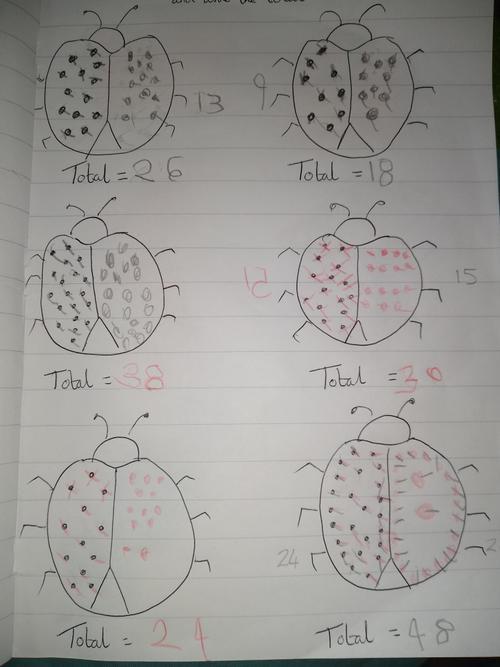 Bug maths!
