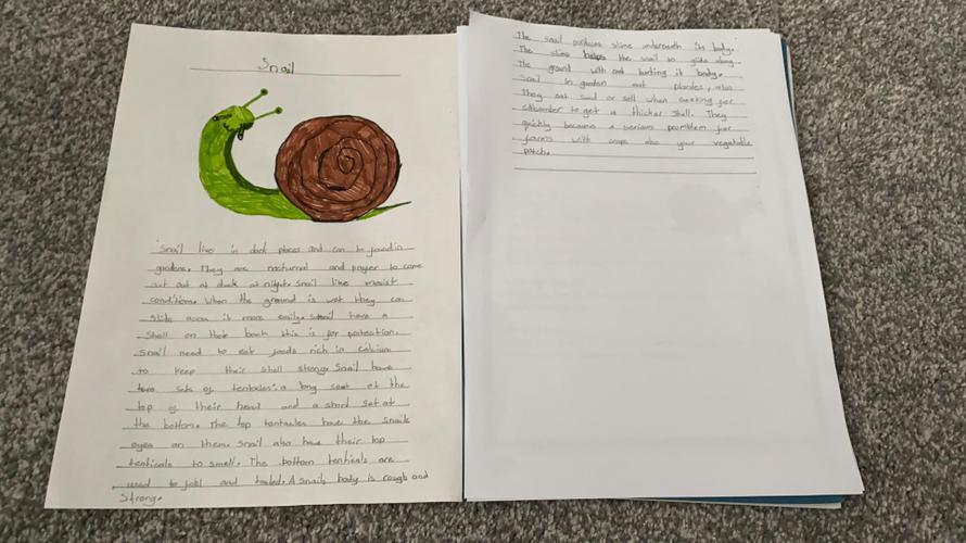 Kyla's snail research