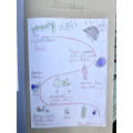 Esme's story map