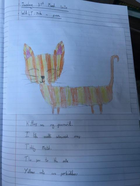Philippa's cat poem