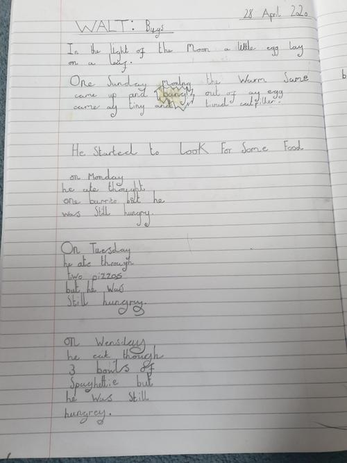 A new version of the Hungry Caterpillar by James