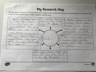 Kayleigh's panda research