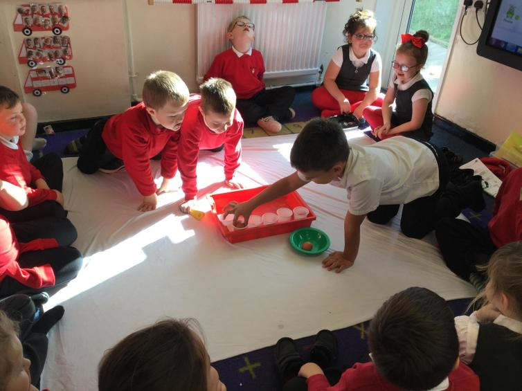 Investigating the effects of sugar on our teeth