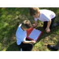 We have been thinking of ideas for our new topic 'Our Wonderful World'.