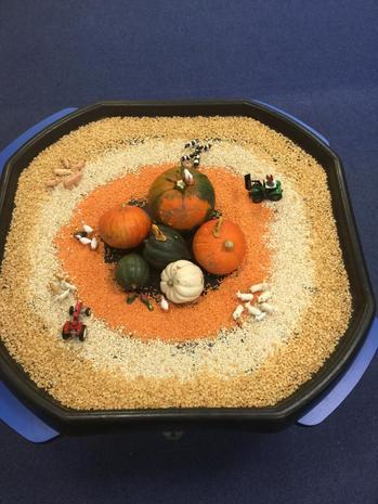 A Harvest Tray