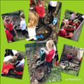 We have been having fun planting in our nature area today.