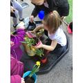 Tidying our garden