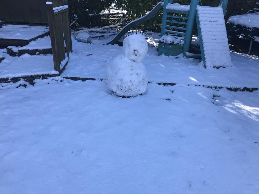 Daisy and her sister made a snowman with spiky hair!