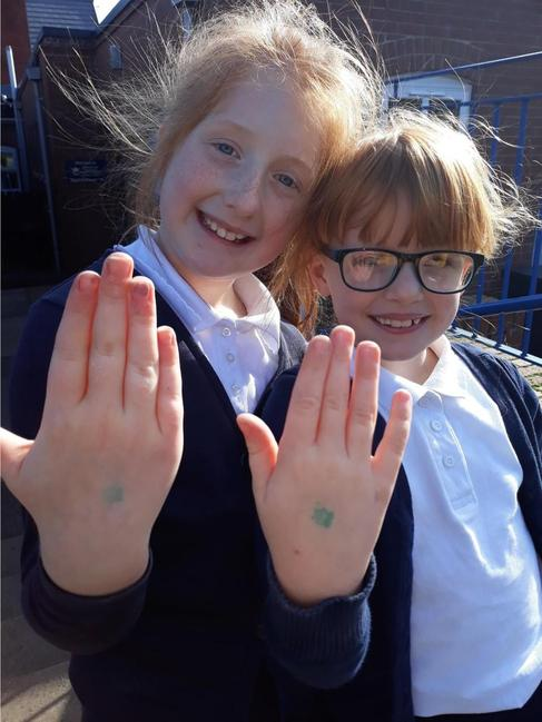 Our Healthy Eating GREEN STAMP scheme