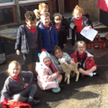 EYFS lamb visit