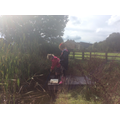 Identifying habitats - what lives in the pond?