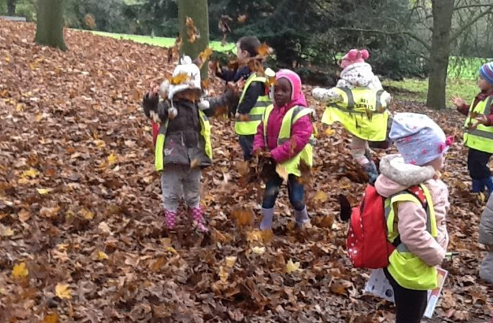 EYFS thinking of words to describe leaves.