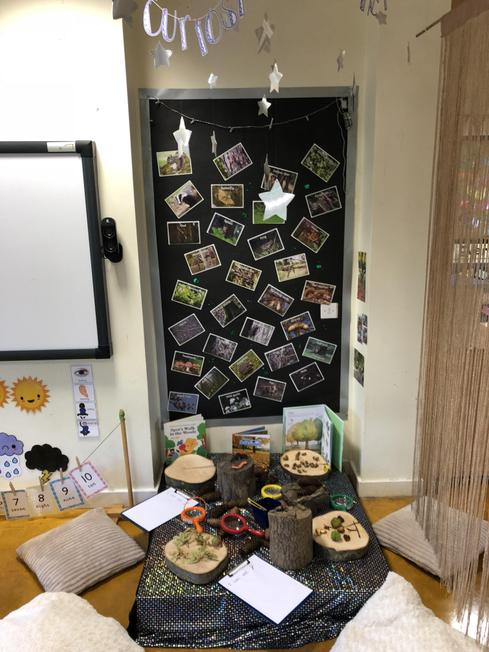 Our 'curiosity corner' to explore our world