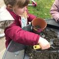 More planting!