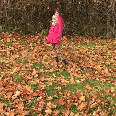 All the leaves are falling down! What colour are all the Autumn leaves?