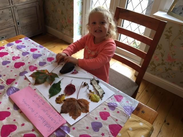 Making pictures with Autumn leaves