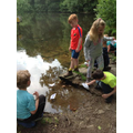 Class 2 pond dipping at Shining Cliff Wood.