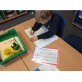 Writing about our favourite toy.