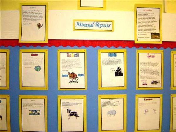 Mammal Reports