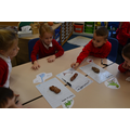 "Using ""poo"" to sort dinosaurs"