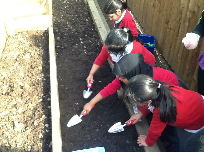 We covered them with soil.