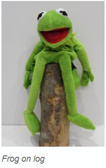 Frogs sit on logs.