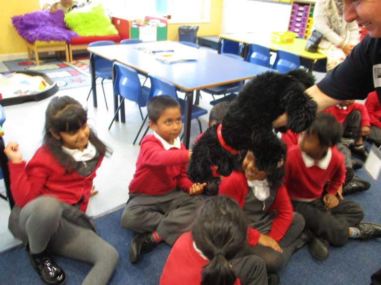 We learnt how to stroke a dog.