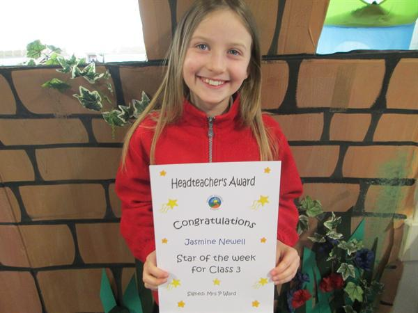 Star of the Week 3rd February 2014