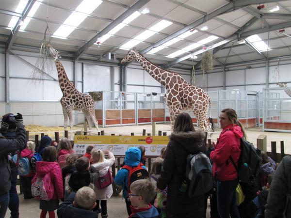 Twycross Zoo - April 2016