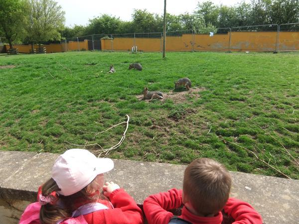 Twycross Zoo!