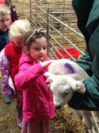 Whirlow Hall Farm 2015