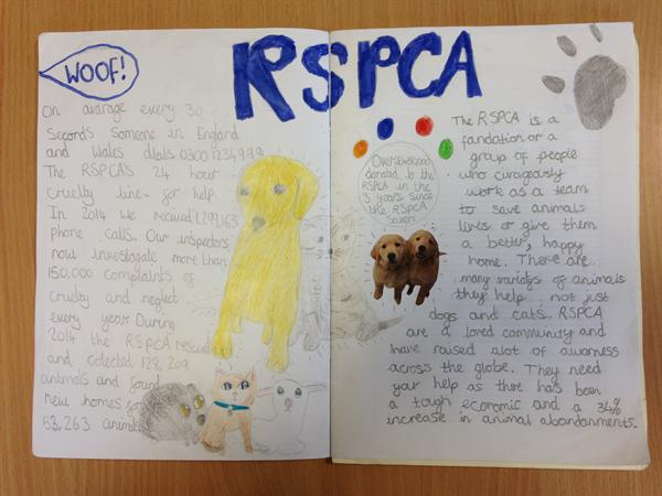 Sophie's RSPCA Project