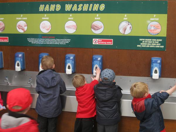 We remembered to wash our hands!