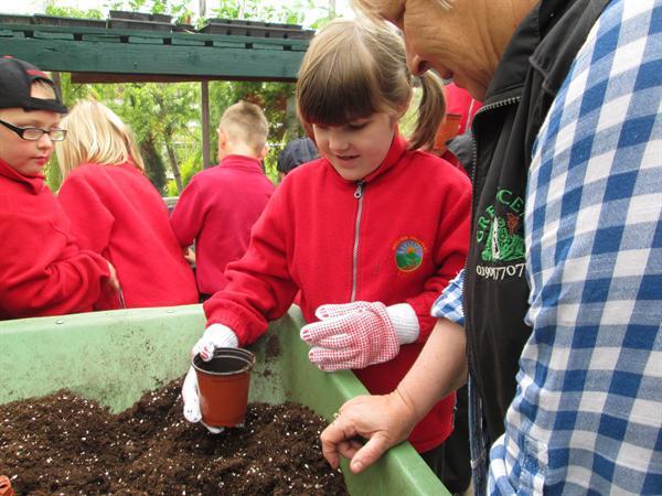 School Visit to Green Scene Garden Centre