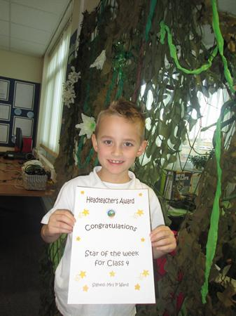 Star of the Week for 4th November 2013