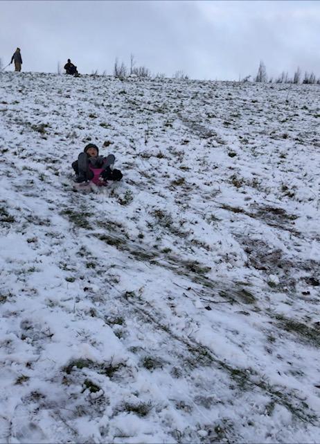 Harrison sledging