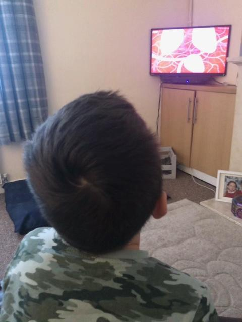Harrison watching a programme about the heart