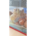 By Wed afternoon we had 8 chicks!