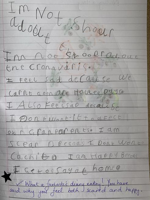 Mr Spruce's daughter's diary.