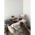 I am grateful for food, my dog Luna & technology