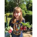 Hannah's spectacular radishes