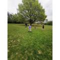 A fun run in the park