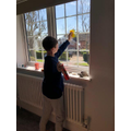 Ben helps out at home - sparkiling windows!.