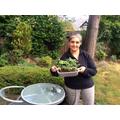 Mrs Gill in her beautiful garden..