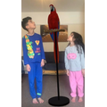 Maya and her brother Daniel found a parrot in their living room