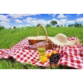 Go on a family picnic.jpg