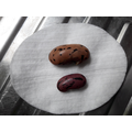 Dry bean seed v soaked bean seed